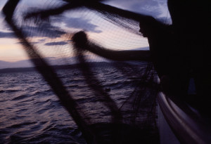 John Hocking on his boat fishing sardines, shooting the nets at sunrise. Mevagissey, Cornwall,UK Sett.2005