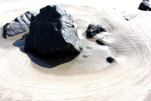 Sculture di mare (1 di 5)